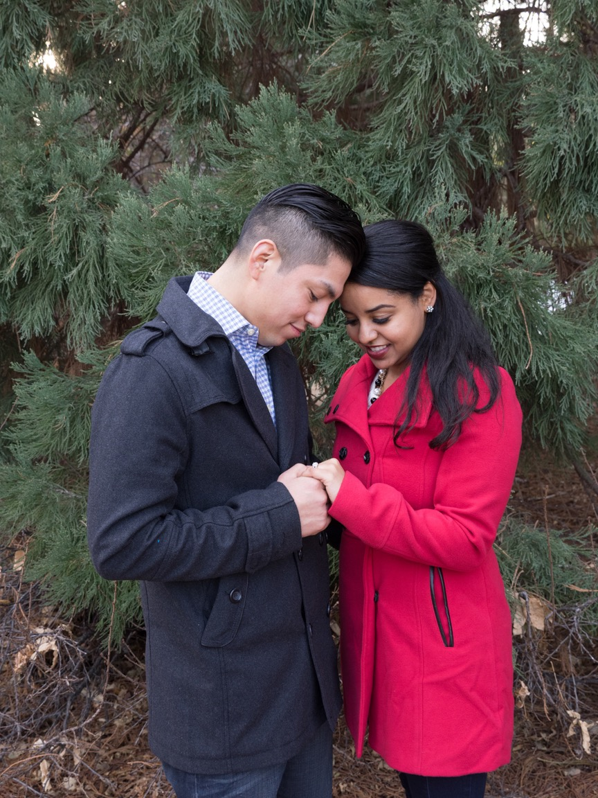 Redet and Mike's Engagement Photos 022